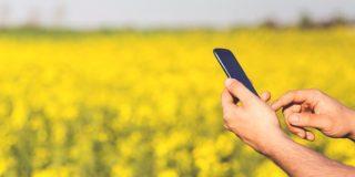 A importância da banda larga no setor agropecuário